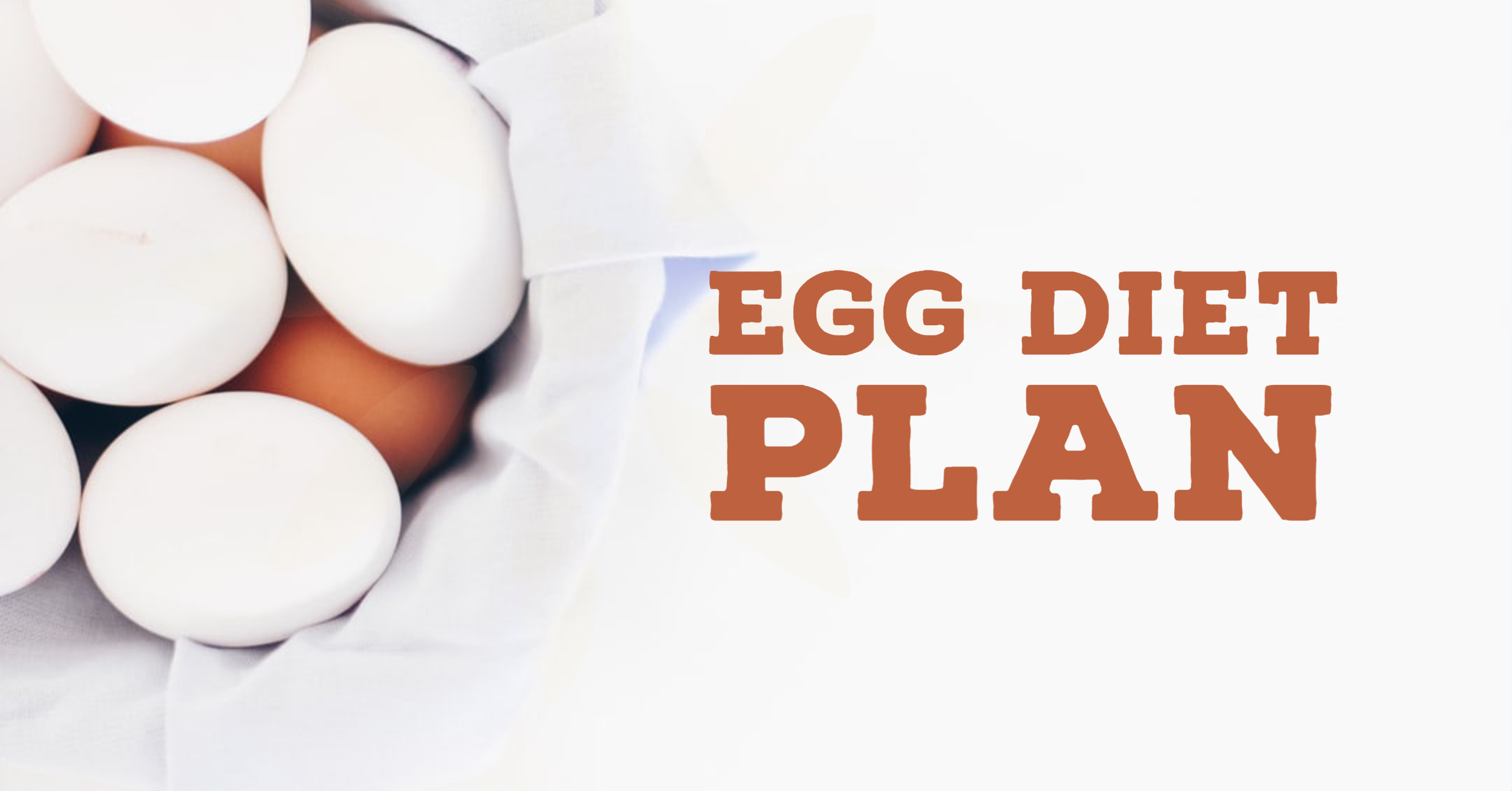 egg diet for weight loss