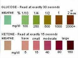 ketone strips in diabetes