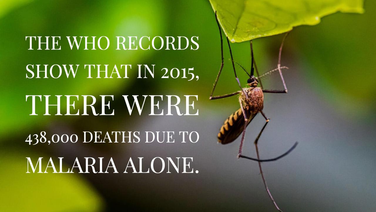 ऑक्सीटेक मच्छर मलेरिया को मार डालेंगे
